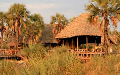 Lodge Safaris in Southern Africa